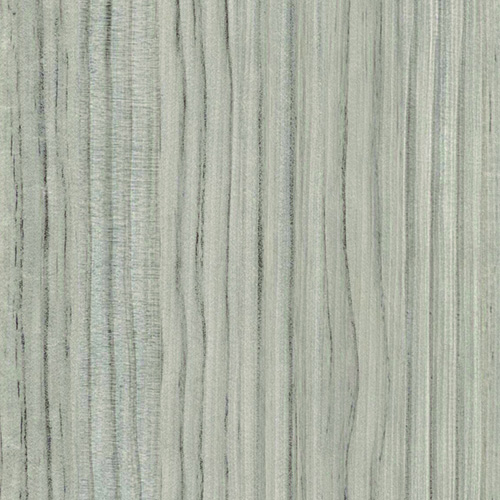 Grey Portuna